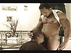 Ebony top fucks bum well
