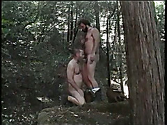 Clasic Bears