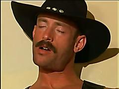 CowboyandBear in the toilet