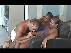 Brazilian cocksucker receives meat