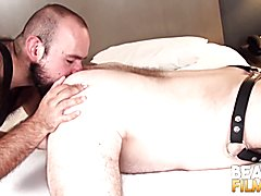Bearfilms haired marco bolt blown before hammering bear hole