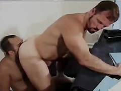 Gay bear office sex sizzles